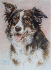 Dog Portrait by Stan Hurr