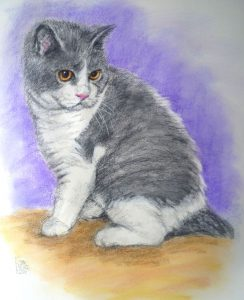 Cat Portrait by Stan Hurr